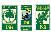Green and Yellow ISA Certified Tree Service Badges