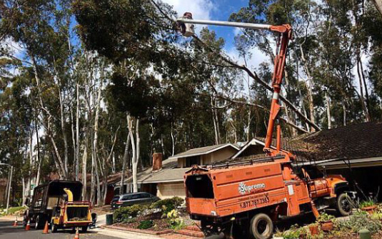 Supreme Tree Boom Truck with Crane trimming tree and Chipper in front of residential home