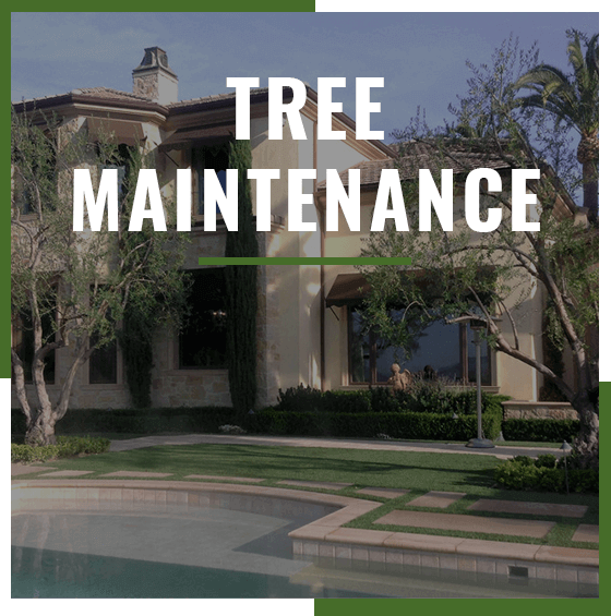 "Supreme Tree Experts ""Tree Maintenance"" service badge showing residential home in background"