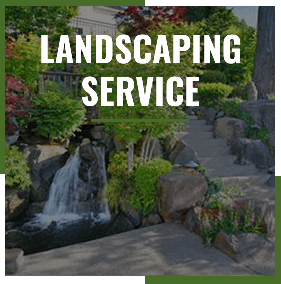 Supreme Tree Experts Landscaping Service for Residential homes