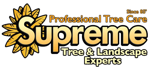 Supreme Tree Experts - Santa Ana, CA - 877-787-7363