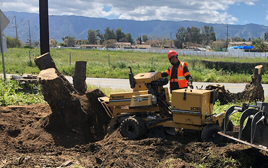 supreme tree expert worker operating stump removal machine in fernando valley ca