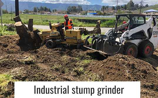 Industrial Tree Stump Grinder working on location