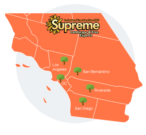 supreme tree service map